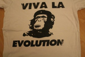 Im Test: Viva La Evolution Womens T-shirt